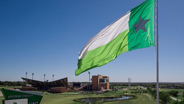 Mean Green Flag