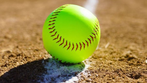 Help Berkeley Fastpitch Purchase Equipment! Image