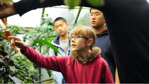 UC Davis Biodiversity Museum Day & On-line Outreach Materials