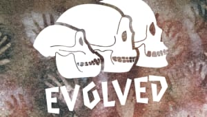 Evolved: The evolution of the human body