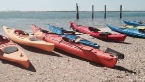 NC Coastal Issues & Experiences Trip for Seahawks