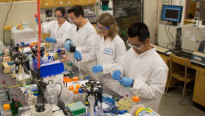 Chemical & Materials Engineering Fund: Research