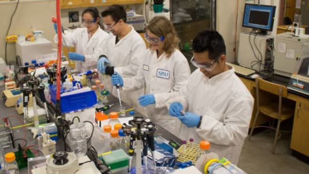 Chemical & Materials Engineering Fund: Research Image