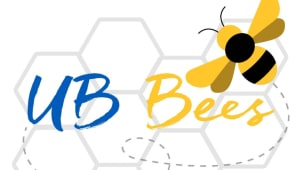 UB Bees: Help us keep our honey bee hives alive!