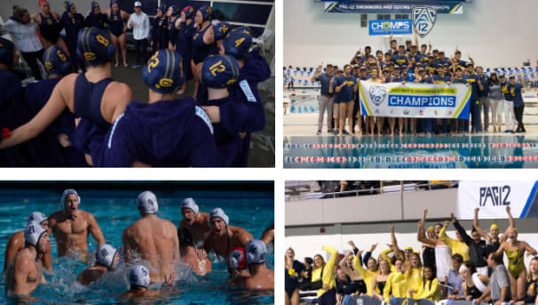 Women's Water Polo and Men's Swimming & Diving Challenge Image