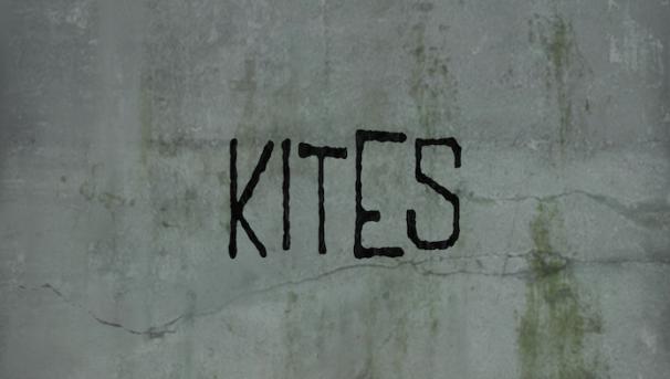 Kites  Image