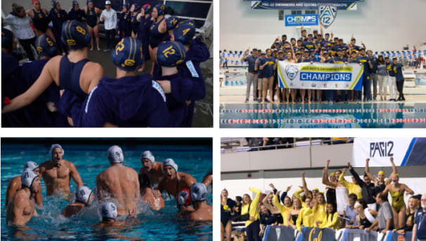 Men's Water Polo and Women's Swimming & Diving Challenge Image