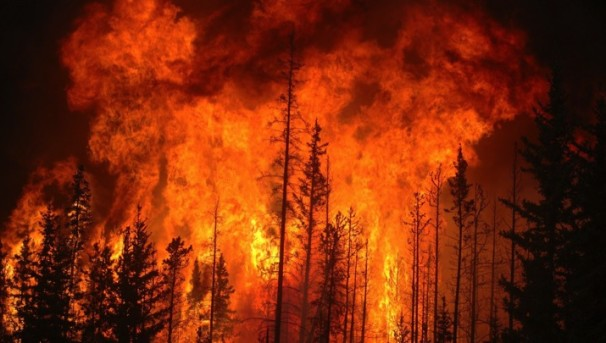 FUEGO:  Early Detection and Management of Wild Fires Image