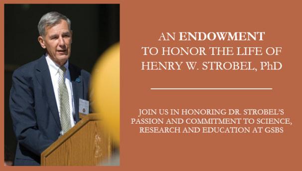 Henry W. Strobel, PhD Scholarship Endowment Image