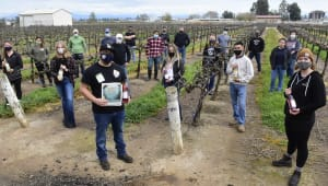 Send students on field trips to commercial vineyards & wineries!