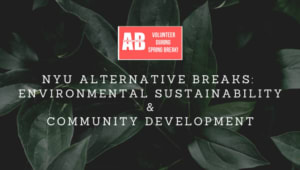 NYU Alternative Breaks: Costa Rica