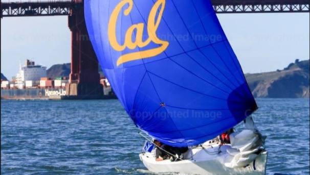 Cal Sailing Team | 2019 Image