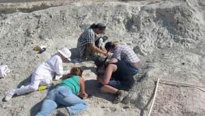 Preserve Nevada's Pleistocene Past