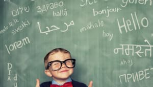 Bilingual language research