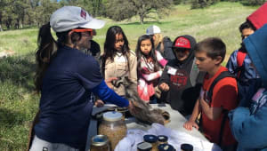 Kids into Discovering Science Outreach Program