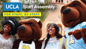 Professional Development Scholarships for UCLA Staff