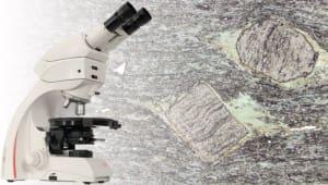 Geology Microscope Fundraiser
