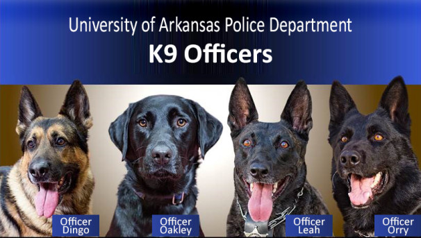 UAPD:  $9K for the K9s Image