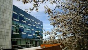 Cornell Brooks School of Public Policy Annual Fund