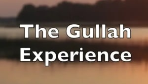 The Gullah Experience