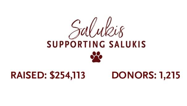 Saluki Cares Student Emergency Fund Image