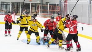 Keep Purdue Hockey Sharp