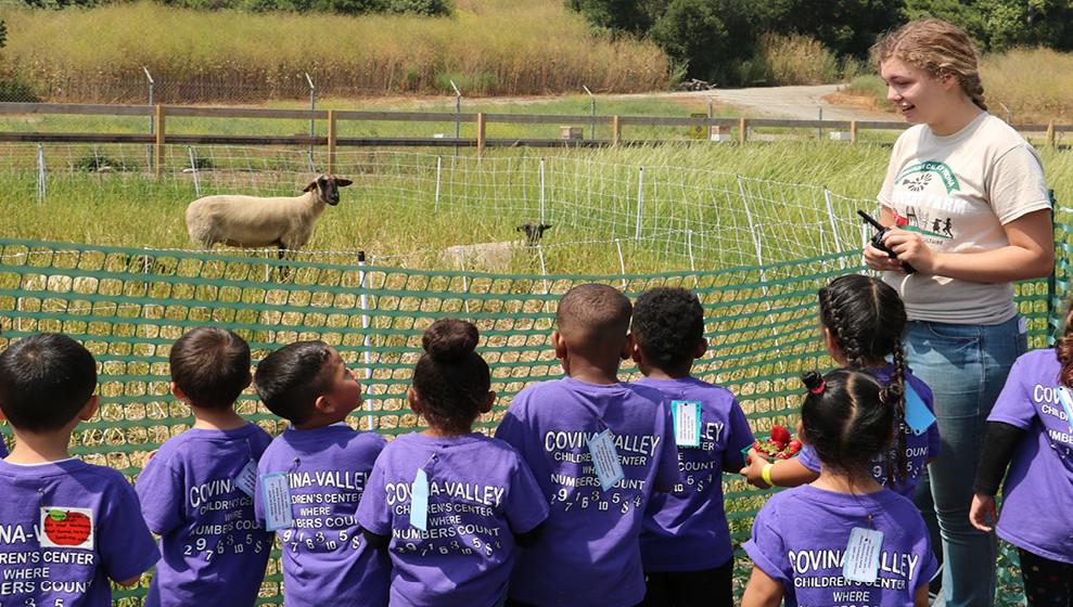 Discovery Farm Field Trip