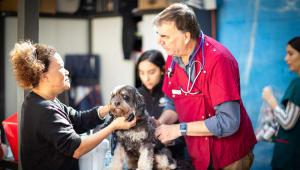 Animal Welfare Outreach Program at HopeStreet
