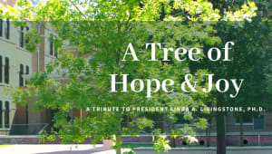 A Tree of Hope & Joy