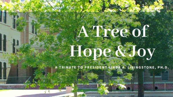 A Tree of Hope & Joy Image