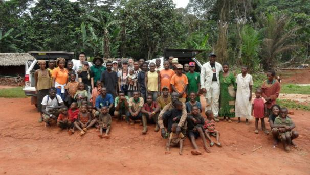 Sustainable Ebony Farming in Cameroon Image
