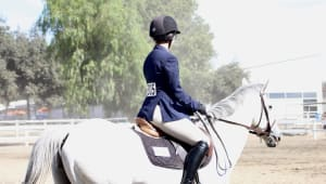 UCLA Equestrian: Getting Riders into the Saddle