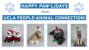 Support UCLA PAC this Paw-liday season!
