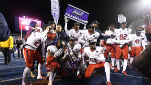 The 'Dogs are Bowl Bound