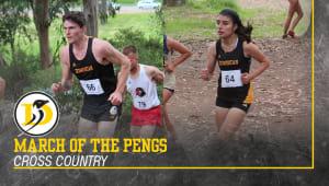 Men and Women's Cross Country