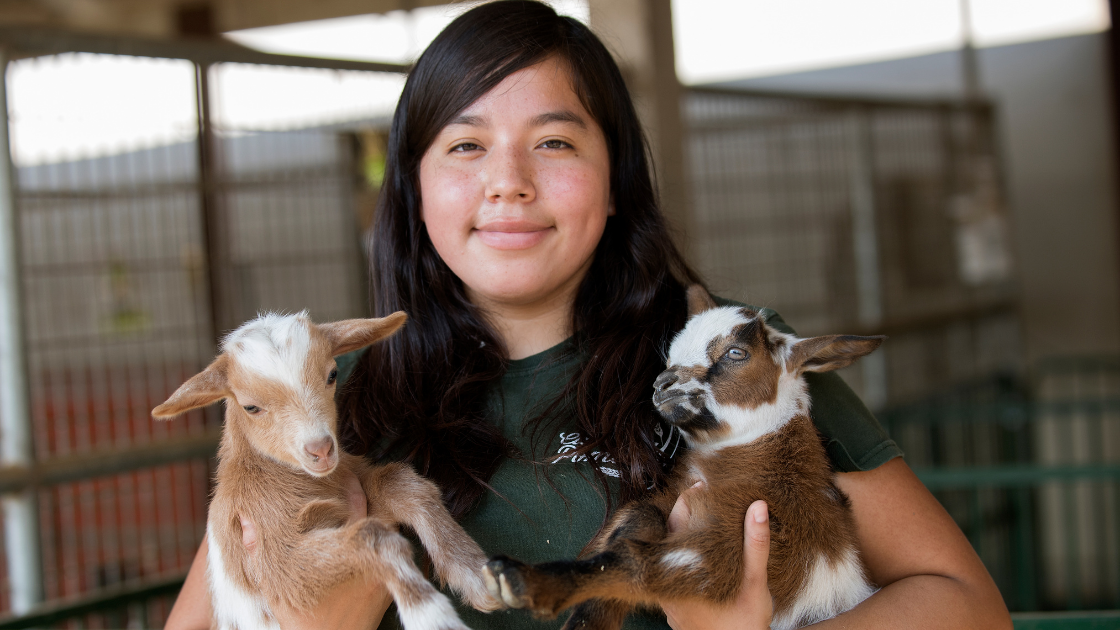 Cal Poly Pomona Huntley College of Agriculture Student