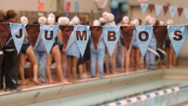 2018 NESCAC Swim/Dive Championship Fundraiser Image