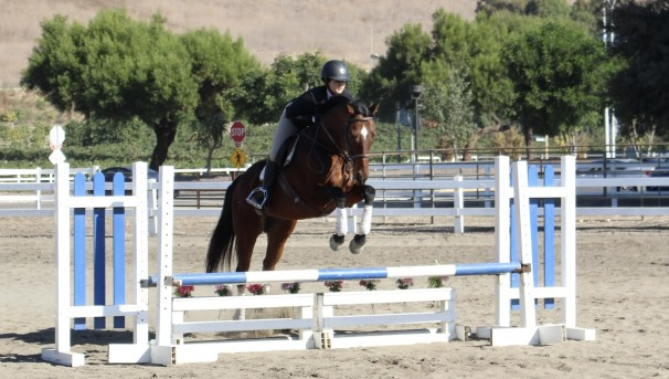 UCLA Equestrian: Getting Riders into the Saddle Image