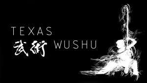 Send Texas Wushu to National Competition