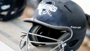 Detroit Mercy Softball Program