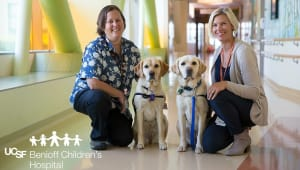 UDAR Gives Back: Help us fund  UCSF Facility Dog Therapy Program