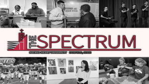 The Spectrum Audrey Niblo Award