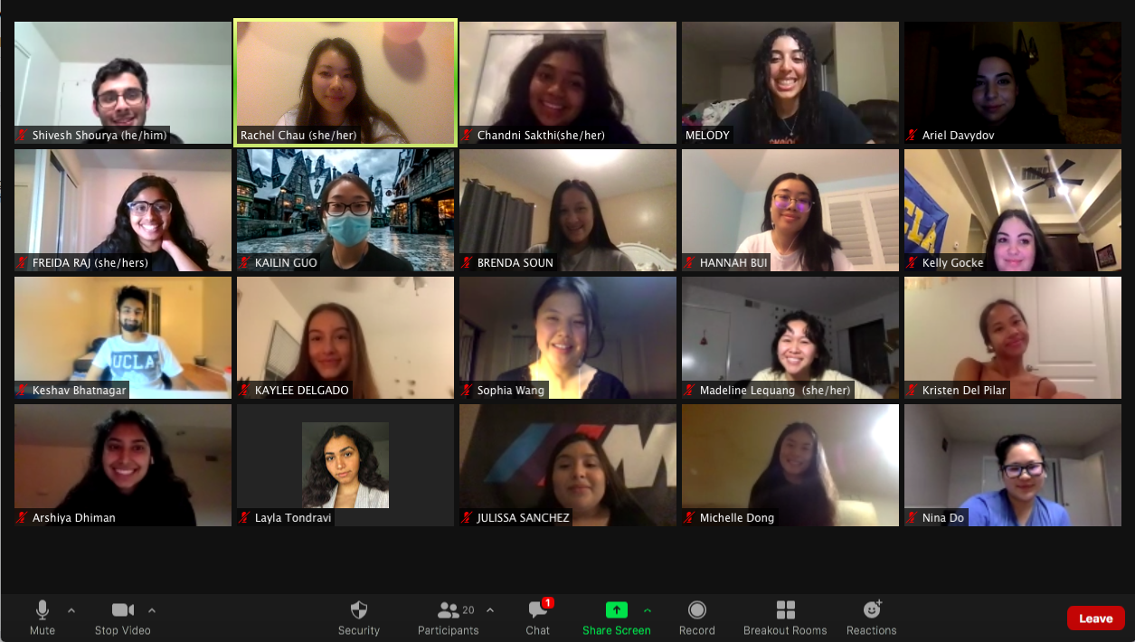 One of our committee meetings on Zoom!