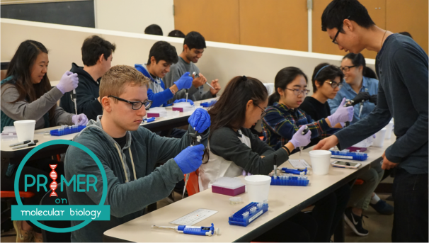 Primer: Molecular Biology for Students Image