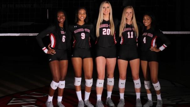 2020-21 My Team Volleyball Image