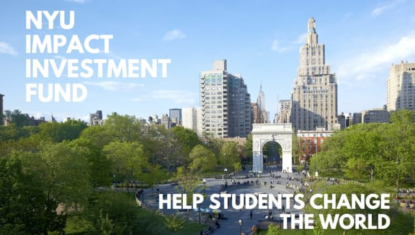 Invest In Social Change Through The NYU Impact Investment Fund! Image