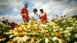 Cornell Botanic Gardens Annual Fund