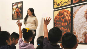 Protect Cultural & Arts Education with the Fowler Museum