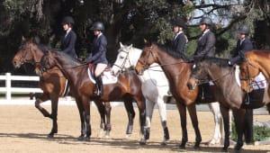 Cal Equestrian Crowdfunding 2021-22