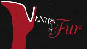 Venus in Fur (Lipstick Theatre)
